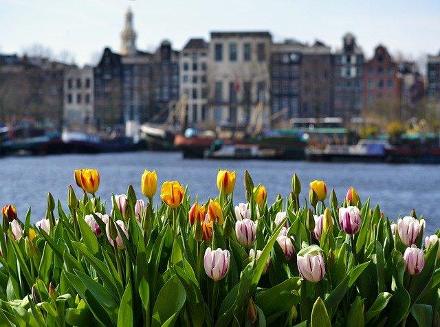 zaanse schans chasing whereabouts amsterdam holland